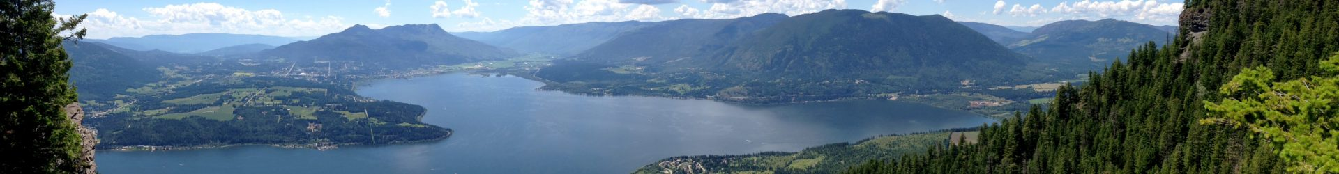 Consultation begins in Salmon Arm area